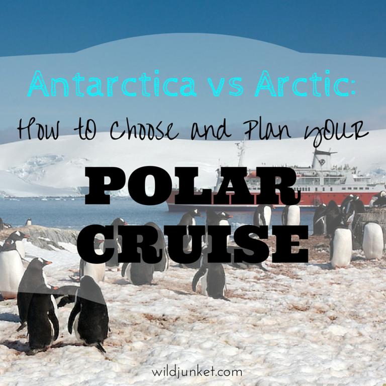 Antarctica vs Arctic: How to Plan Your Polar Cruise – Wild Junket Adventure Travel Blog